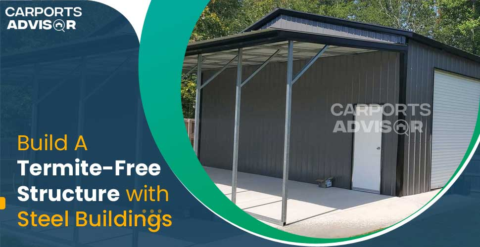 Build A Termite-Free Structure with Steel Buildings